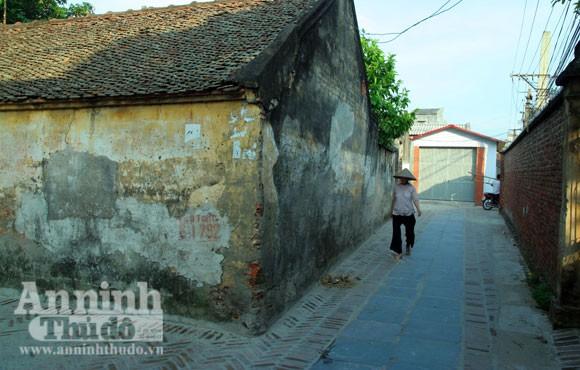 Vào làng Giầu xem con đường độc đáo bậc nhất Việt Nam ảnh 14
