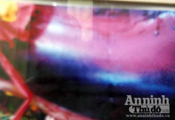 Lạ kỳ cá heo chầu Miếu Đỏ mang dòng chữ lạ trên mình ảnh 2