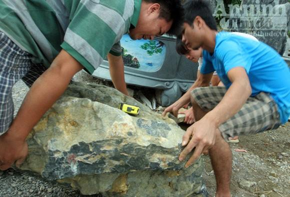 """""""Phù phép"""" biến đá nhỏ thành đại thạch kiểng ảnh 1"""
