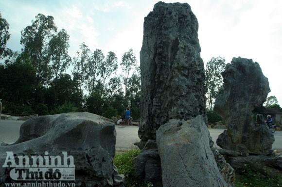 """""""Phù phép"""" biến đá nhỏ thành đại thạch kiểng ảnh 6"""