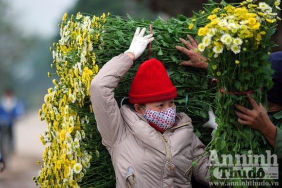 """""""Tôi được tặng cả cánh đồng hoa bao la"""" ảnh 7"""