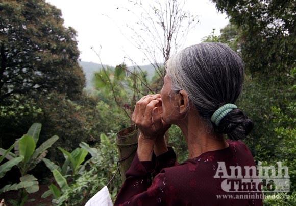 Bà già bắt kẻ cắp trong vườn cò ảnh 3