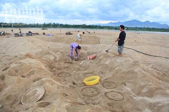Gieo mầm sống trên triền cát ảnh 11