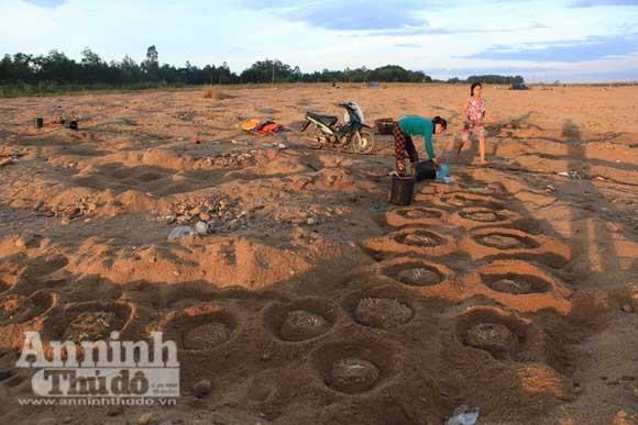Gieo mầm sống trên triền cát ảnh 9