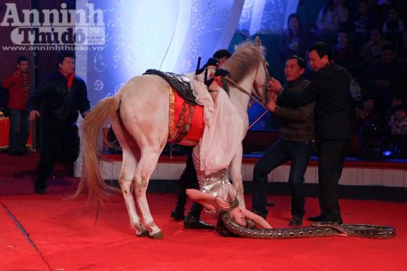 Người đẹp dẫn chương trình với trăn... tinh ảnh 3