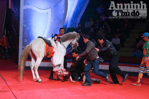 Người đẹp dẫn chương trình với trăn... tinh ảnh 5
