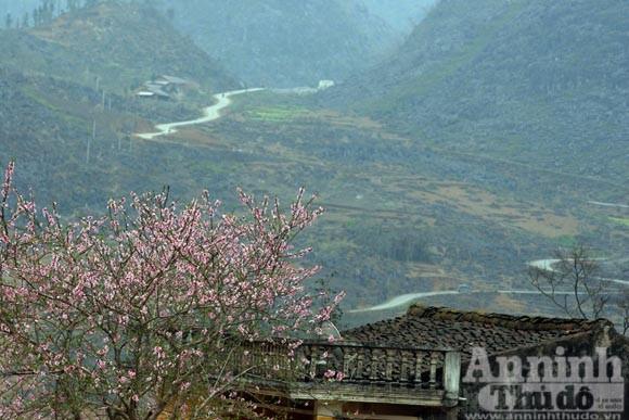 Trải nghiệm cung bậc mùa xuân vùng đá núi ảnh 6