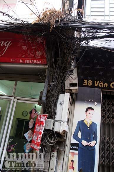 """""""Cây đa tỷ rễ"""" trên phố Đê La Thành ảnh 16"""