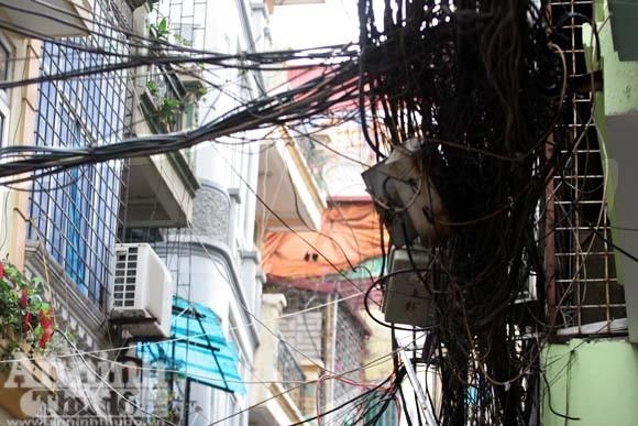 """""""Cây đa tỷ rễ"""" trên phố Đê La Thành ảnh 10"""