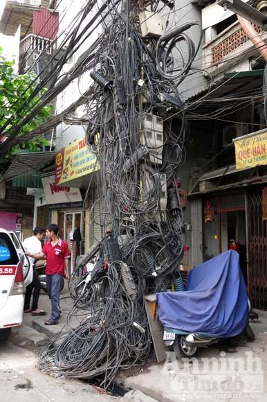"""""""Cây đa tỷ rễ"""" trên phố Đê La Thành ảnh 3"""
