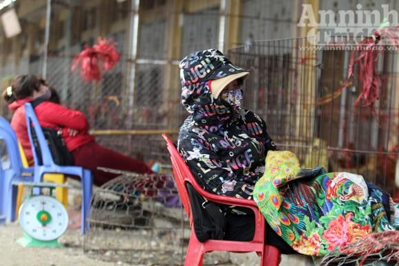 Lo lắng dịch cúm gia cầm, chợ Hà Vĩ đìu hiu, ế ẩm ảnh 1