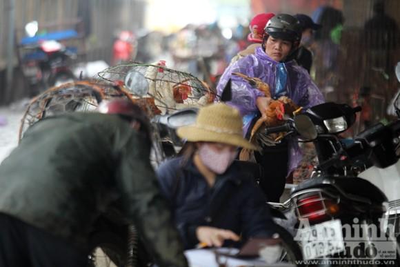 Lo lắng dịch cúm gia cầm, chợ Hà Vĩ đìu hiu, ế ẩm ảnh 2