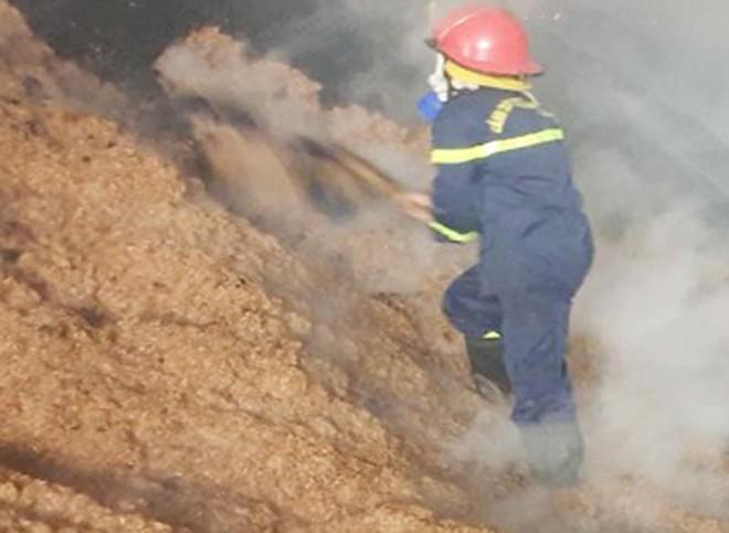 Dập tắt đám cháy xưởng sản xuất ván bóc ảnh 1