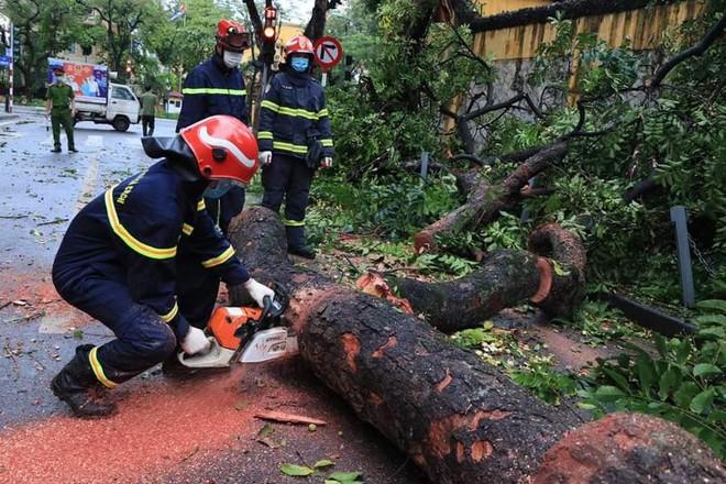 Cảnh báo tai nạn thương vong do giông lốc mùa mưa bão ảnh 1