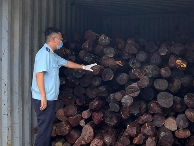 Ngụy trang tinh vi để vận chuyển gần chục tấn gỗ quý ảnh 1