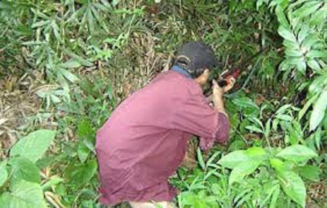 Đi săn cùng đồng nghiệp, thầy giáo trúng đạn tử vong ảnh 1
