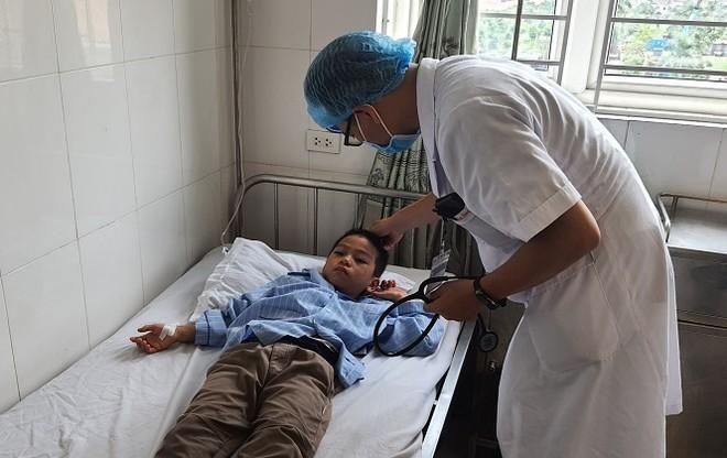16 học sinh tiểu học nhập viện vì bị ong đốt ảnh 1