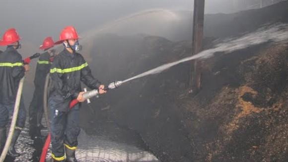 Hỏa hoạn ở nhà máy chế biến gỗ ảnh 1