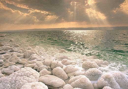 Có sự sống dưới đáy Biển Chết ảnh 1