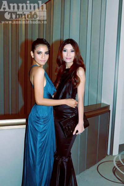 Vinh danh 10 siêu mẫu của làng thời trang Việt ảnh 7