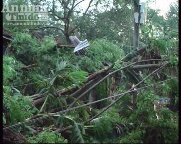 115 ngôi nhà bị sập và tốc mái trong cơn lốc xoáy ảnh 2