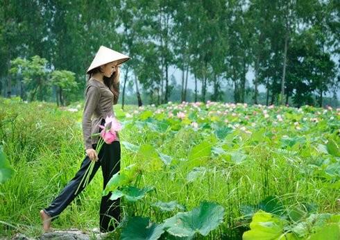 Hoa hậu biển Nguyễn Thị Loan mộc mạc bên đóa hoa sen ảnh 1