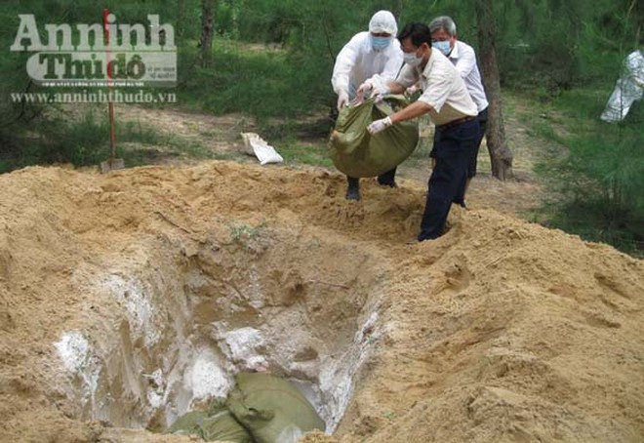 Cán bộ thú y làm ngơ để lò mổ giết thịt lợn nhiễm bệnh ảnh 2