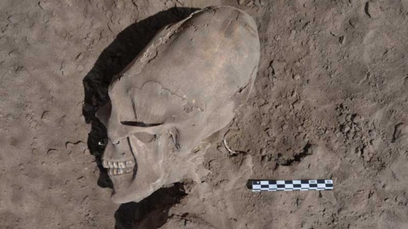 """Phát hiện sọ """"người ngoài hành tinh"""" ở Mexico ảnh 2"""