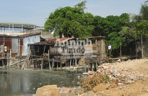 """Vô tư xả thải: vịnh Cam Ranh đang thành... """"biển thối"""" ảnh 4"""