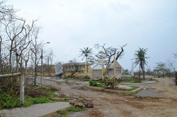 Đảo Cồn Cỏ tan hoang sau bão, cần hỗ trợ khẩn cấp ảnh 8