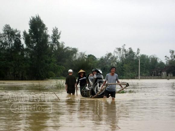 Nghệ An: 2.430 ngôi nhà chìm trong biển nước ảnh 3