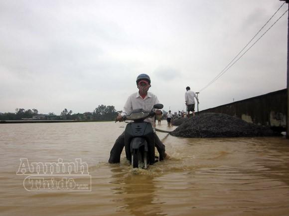 Nghệ An: 2.430 ngôi nhà chìm trong biển nước ảnh 1