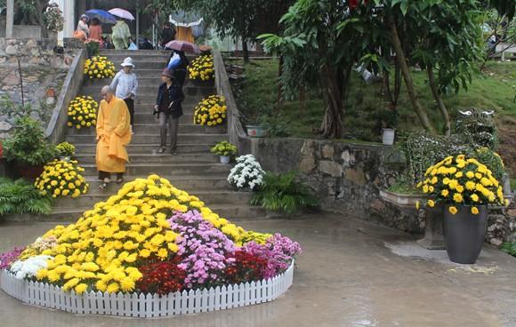 Về Quảng Ninh ghé thăm lễ hội hoa cúc ảnh 10