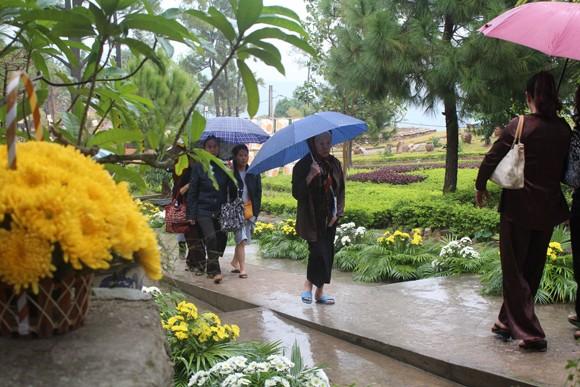 Về Quảng Ninh ghé thăm lễ hội hoa cúc ảnh 11