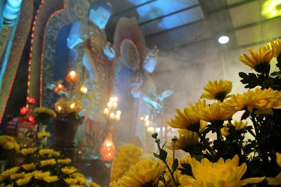 Về Quảng Ninh ghé thăm lễ hội hoa cúc ảnh 5