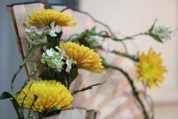 Về Quảng Ninh ghé thăm lễ hội hoa cúc ảnh 8