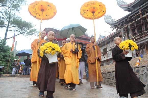 Về Quảng Ninh ghé thăm lễ hội hoa cúc ảnh 2