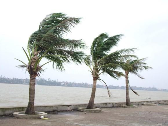 Mở sẵn lô cốt, đón dân tránh siêu bão ảnh 13