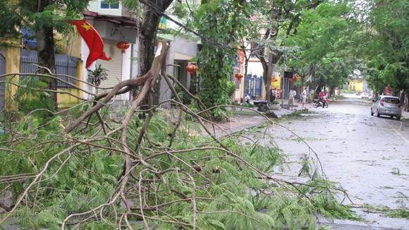 Đã có 13 người thiệt mạng do bão số 14 ảnh 3