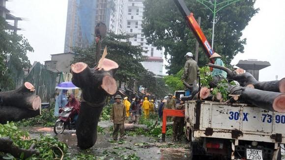 Đã có 13 người thiệt mạng do bão số 14 ảnh 4