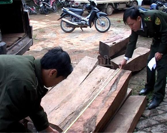 Bắt 2 vụ buôn gỗ lậu trị giá gần 300 triệu đồng ảnh 1