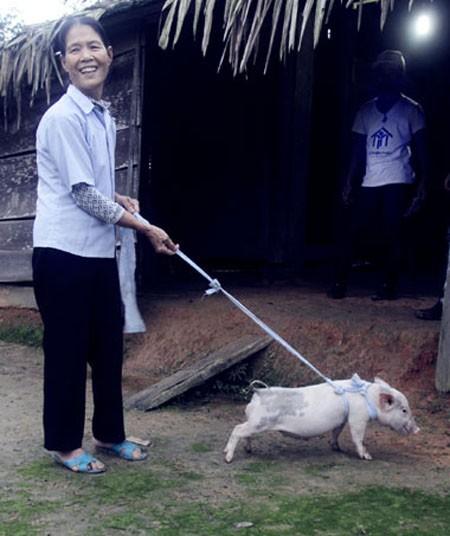 Hàng trăm con lợn, gà giống được trao tận tay người dân vùng lũ ảnh 1