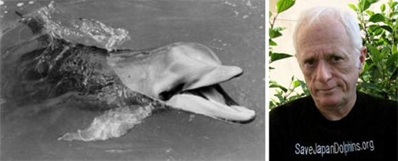 5 trường hợp kỳ lạ động vật biết tự sát ảnh 1