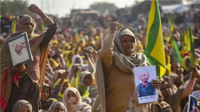 Góa phụ nông dân ở Ấn Độ biểu tình phản đối cải cách nông nghiệp ảnh 2