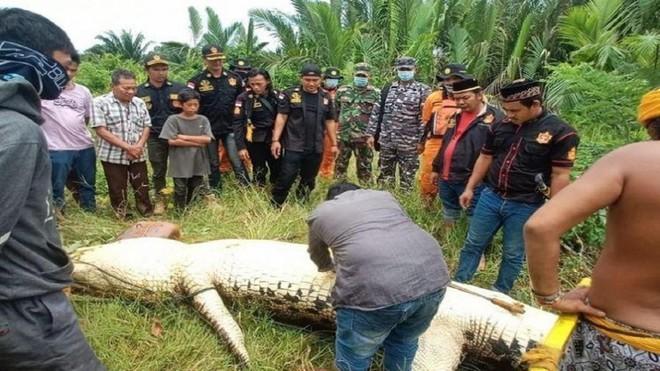 Bé trai 8 tuổi mất tích khi đi bơi được tìm thấy trong bụng cá sấu ảnh 2