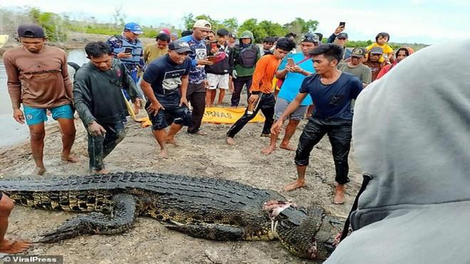 Bé trai 8 tuổi mất tích khi đi bơi được tìm thấy trong bụng cá sấu ảnh 1