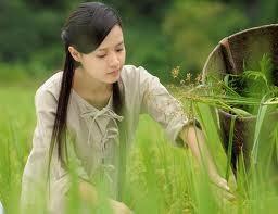 """Những """"đả nữ"""" của màn ảnh Việt Nam ảnh 2"""