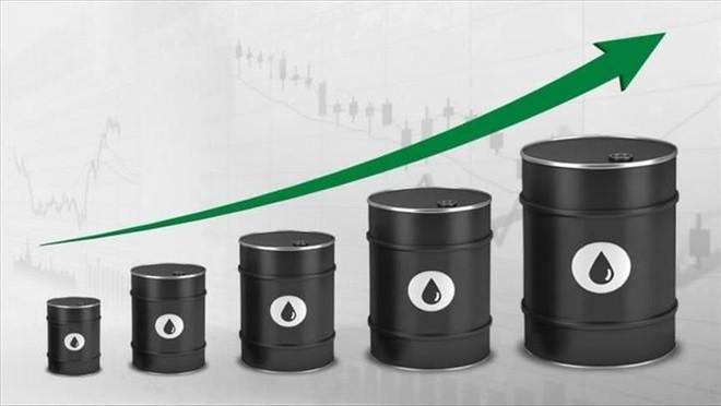 Giá dầu tăng sau khi Mỹ cho phép điều trị Covid-19 bằng huyết tương ảnh 1