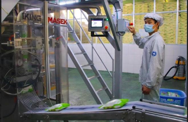 Vietsugar nỗ lực cùng nông dân phát triển vùng nguyên liệu mía ảnh 3