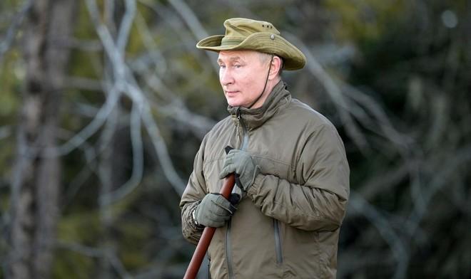 Điện Kremlin: 'Đến gấu Siberia còn nhận ra ông Putin!' ảnh 1